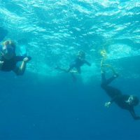 Idée Cadeau Atao Plongée Martinique : catamaran sous l'eau 10