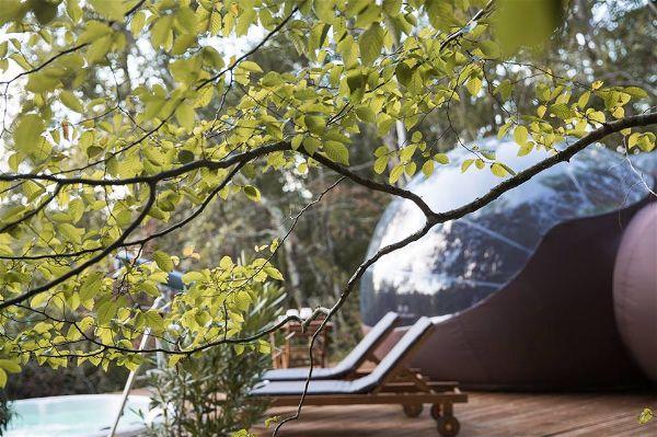 Idée Cadeau Chrysalide St-Martin à Nérac : Dormir sous les Bulles sous arbre