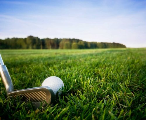 Idée Cadeau Michel Delbos PGA Lyon sur le green