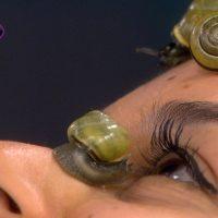 Idée Cadeau Chris'Cocooning Lamballe randonnée des caracoles