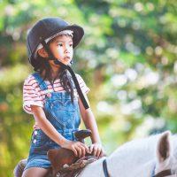 Idée Cadeau Les 3 Fers Saint-Raphael enfant à cheval