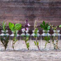 Idée Cadeau La Halte Bien-Être Berneval-le-Grand - aromathérapie