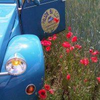 Idée Cadeau Les Deuches du Lac Annecy Chapeiry - 2cv dans un champ
