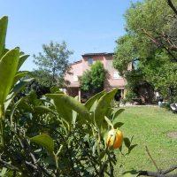 Idée Cadeau Le Clos des Vignes Saint-Raphael - le jardin