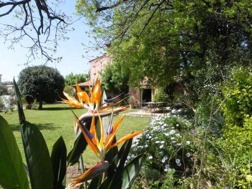 Idée Cadeau Le Clos des Vignes Saint-Raphael - maison et jardin