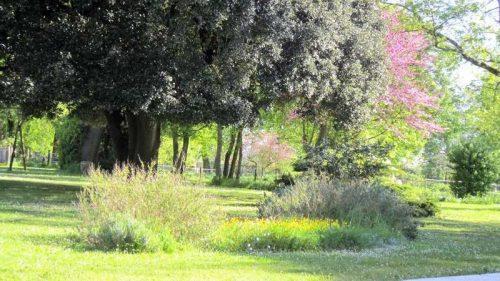 Idée Cadeau Le Clos de la Garenne Puyravault - la parc