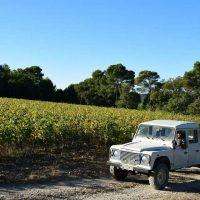 Idée Cadeau Villa Baulieu Rognes - dans les vignes